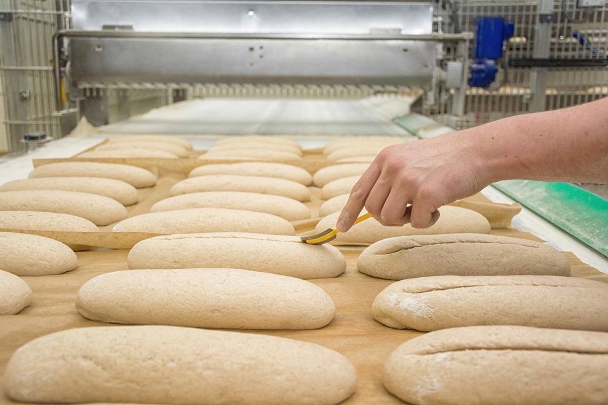 Découvrir le process de scarification du fabricant de pains et brioches congelés Briogel